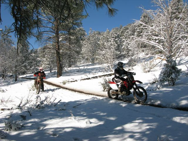 Snow and Wet Trails
