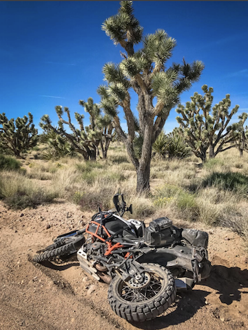 mojave crash pic